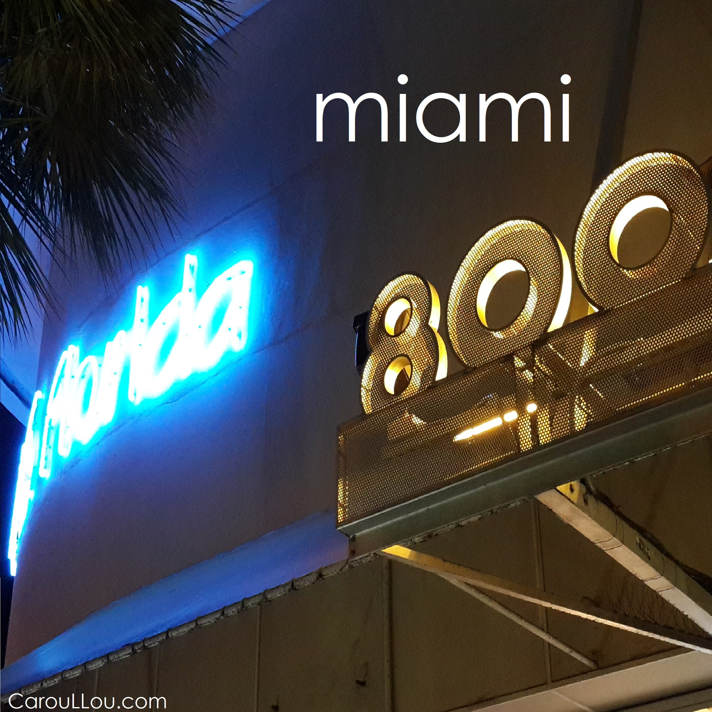 CarouLLou.com Carou LLou in South Beach Miami Florida Lincoln road +-